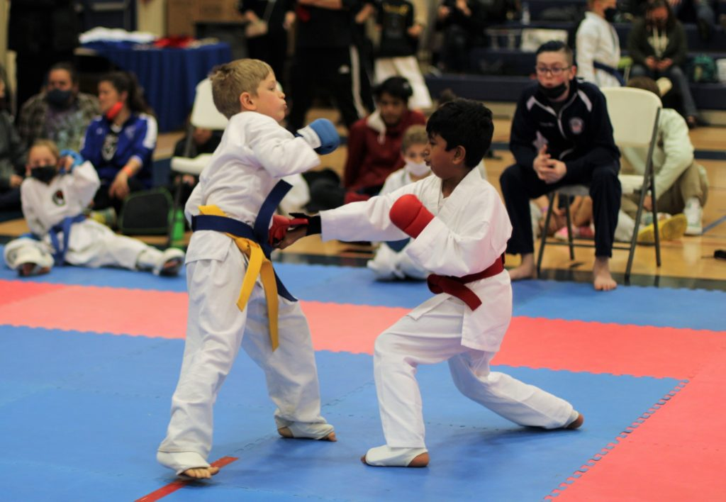 IMG 6117 2 1024x708, USA Martial Arts of Morgantown